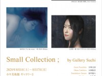 Small Collection 2020チラシ-1